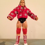 Jakks Custom The Red Rooster Terry Taylor